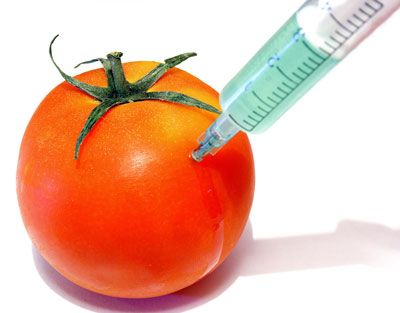 Tomato being injected by a syringe