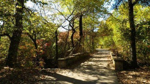 (Arbor Hills Preserve scene)