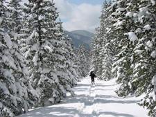 Snowshoeing near Taos